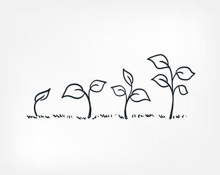 plant growing line art doodle vector symbol sign concept
