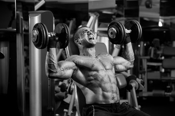 Bodybuilding Workout at the Gym. Bodybuilder Lifting Weights