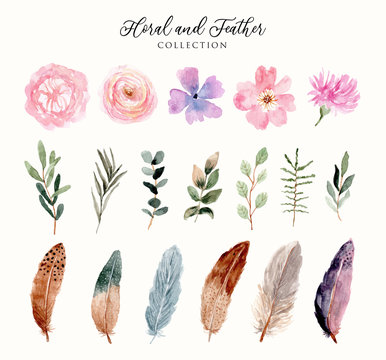 watercolor floral and feather collection