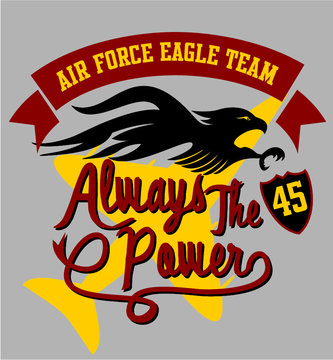 eagle air force print embroidery graphic design vector art