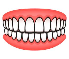 Vector teeth design isolated drawing