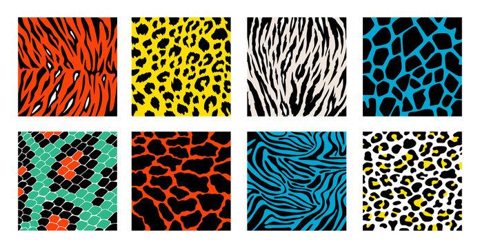 Animal skin background pattern vector set. Safari textile collection. Giraffe, zebra, leopard, jaguar.  Animal backgrounds for textile design, wrapping paper, prints.