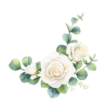 Watercolor vector bouquet with eucalyptus leaves and roses.