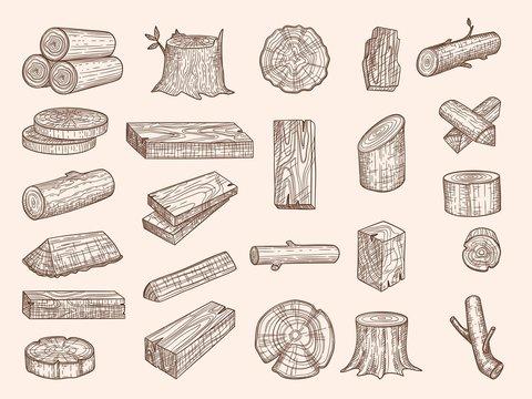 Wooden trunks. Vintage drawn lumber stacked oak wooden old plants chopping vector sketch set. Oak trunk, wooden cut firewood, natural hardwood illustration
