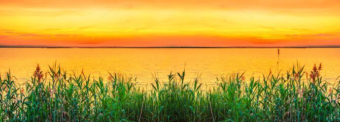 Foto auf Gartenposter Melone puesta de sol tras la vegetacion de la orilla del mar