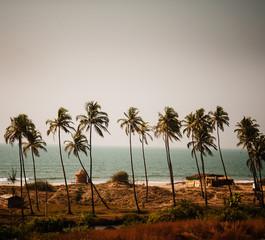 Beaches of Goa, Western India