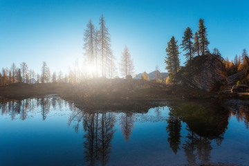 Fotomurales - Beautiful lake and forest during sunset landscape nature. Amazing nature landscape during sunset. Federa lake. Dolomites Alps. Italy.