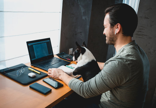 Freelancer man working from home with his dog sitting together in the office.Side view of man using laptop at home with cute dog
