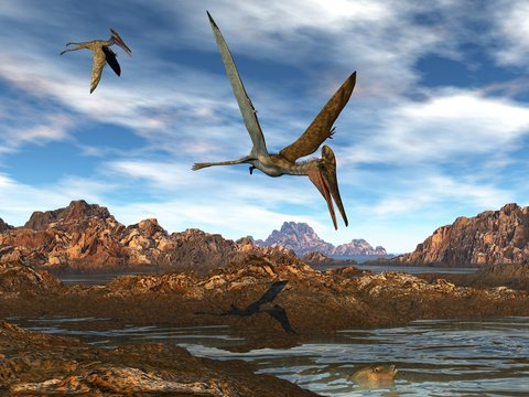 Pterodactylus flying upon water by sunset light - 3D render