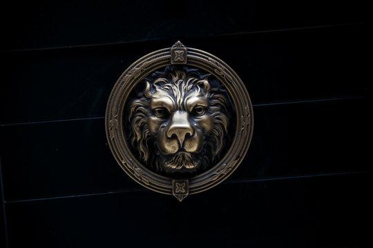 Close-up Of Golden Lion Sculpture On Black Wall