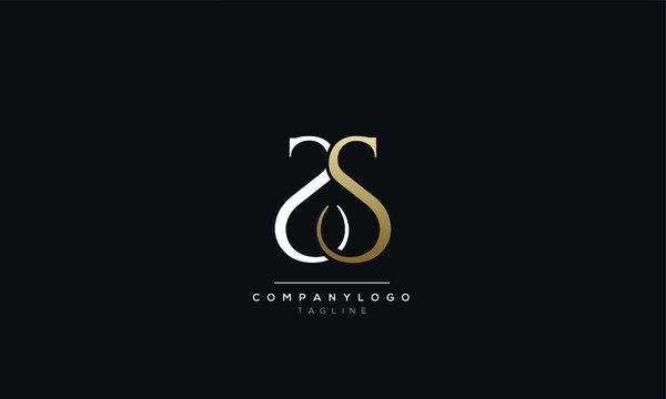 SS S Letter Logo Design Icon Vector Symbol