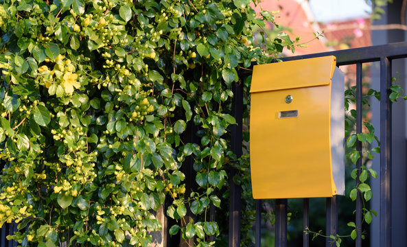Modern yellow mail box on black fence with beautiful yellows background