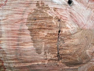 Wall Mural - old wood texture
