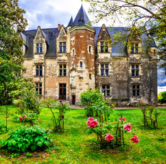 France tourism and travel. Beautiful castles of Loire valley - elegant chateau de Montresor .