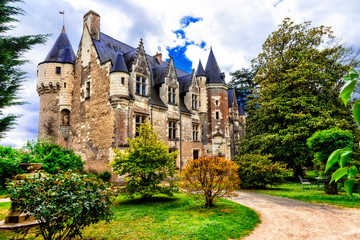 Beautiful romantic castles of Loire valley - Montresor chateau. Famous castles and landmarks of France