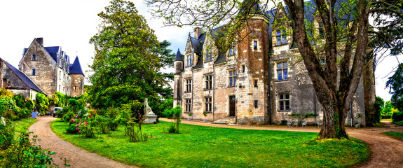 Beautiful romantic castles of Loire valley - chateau de Montresor . Famous castles and landmarks of France