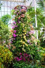 New York Botanical Garden Orchid Show Trellis