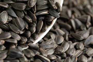 A pile of sunflower seeds. A closeup of dry sunflower seeds. Appetizing seeds. The texture of black sunflower seeds.