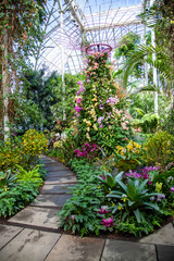 Beautiful Garden Path with Tall Trellis
