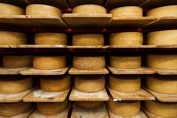 Wheels of raw cow milk cheese age at creamery in Hinwil, Switzerland