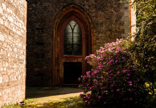 Church door with a rhododendron bush in front