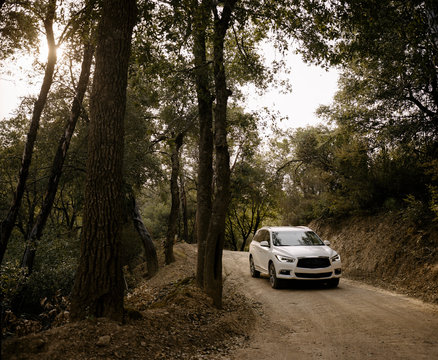 Car driving through forest in Big Sur