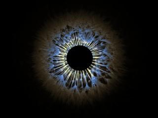 Digital Composite Image Of Iris Against Black Background
