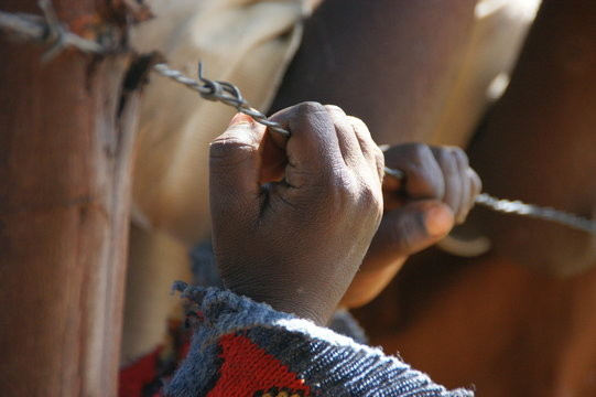 Cropped Image Of Hands Holding Barbed Wire