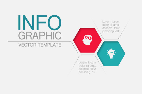 Vector iInfographic template for business, presentations, web design, 2 options.