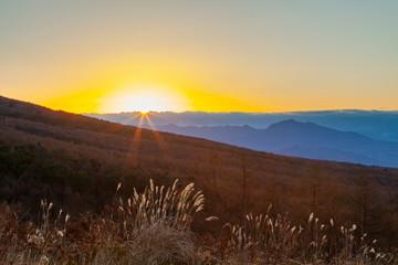 Wall Mural - 創造の森で迎える日の出の風景、長野県諏訪郡富士見町富士見高原にて