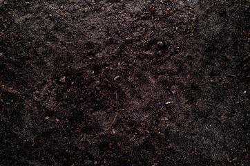 Naturalna żyzna gleba