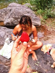 Cropped Image Of Hand Holding Strawberry By Woman Sitting On Rock