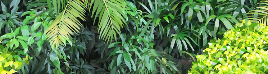 Panoramic background of dense green vegetation in the jungle