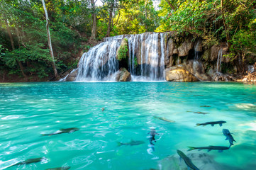 Wall Mural - Erawan waterfall in Thailand. Beautiful waterfall with emerald pool in nature.