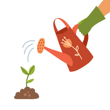 Watering can holding in hand. Man watering sproutwith a watering can. Drops of water falling. Human hand in glove with can watering plant . flat vector illustration Isolated on white background.