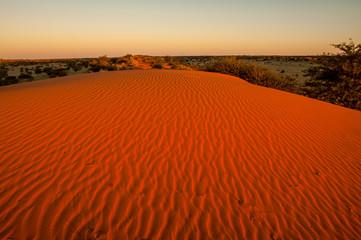 Foto op Canvas Rood traf. orange sunset in the desert kalahari namibia