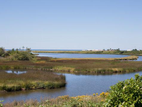 Ocean water snaking through marshy shores in Prince Edward Island, Canada
