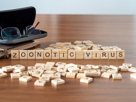 zoonotic virus concept represented by wooden letter tiles on a wooden table with glasses and a book