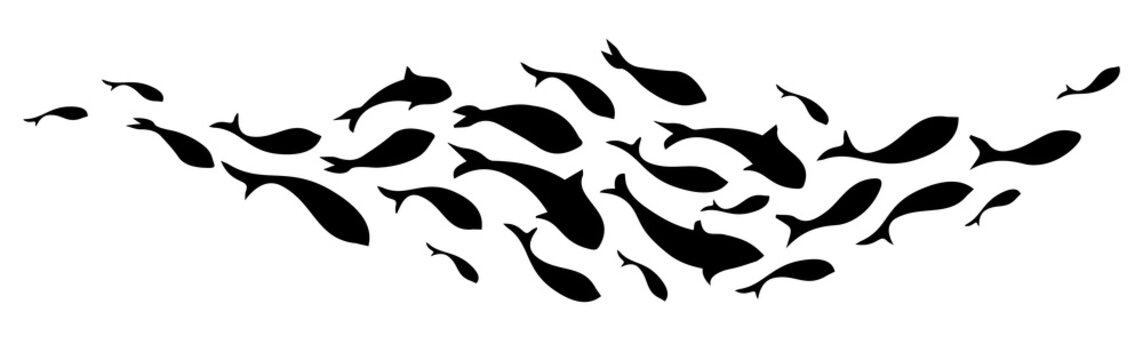 Black silhouette school of fish. Vector illustration.
