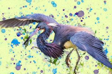 Little Blue Heron Hunting Dance, Oil painting, Bird portrait digital painting, Mixed media, Creative art, Heron fishing, Royalty free stock image