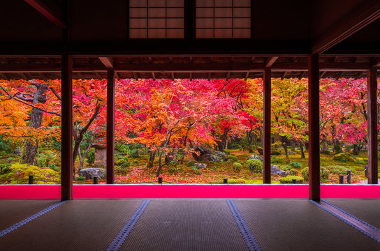 京都 圓光寺の紅葉