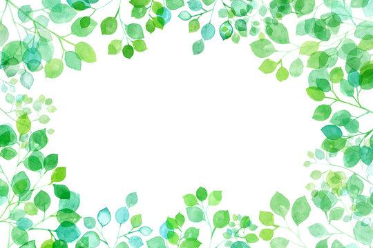 見上げた新緑、太陽光に透過し輝く枝葉の水彩イラスト、フレーム背景