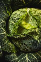 Głowa zielonej kapusty włoskiej z bliska karbowane liście ciemna zieleń