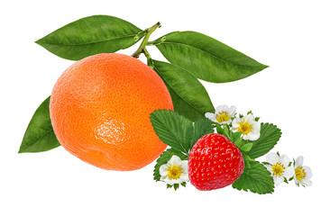 Fototapete - Tangerine mandarin fruit and strawberries isolated on white background