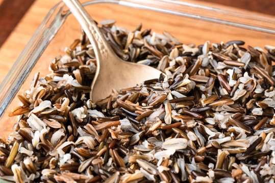 Cooked Wild Rice in a Dish