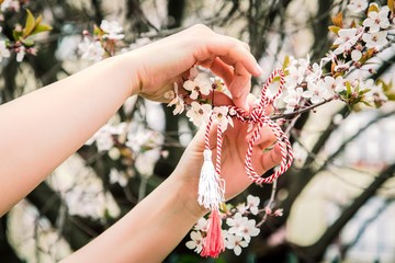 Cropped Hands Of Woman Tying Martisor On Cherry Tree