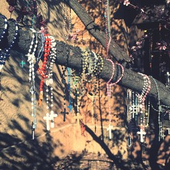 Rosary Beads Hanging On Tree Against Wall