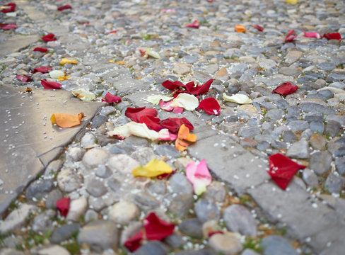 Selective focus close up view of red, pink, white, orange and yellow rose petals along with rice grains scattered on the stony paved ground after a wedding ceremony in Spain