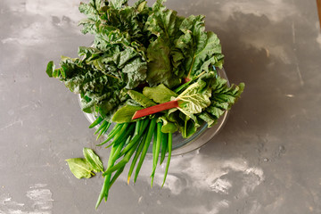 Rhubarb, sorrel, green onions - delicious natural foods for vegan or low-calorie diets Wall mural