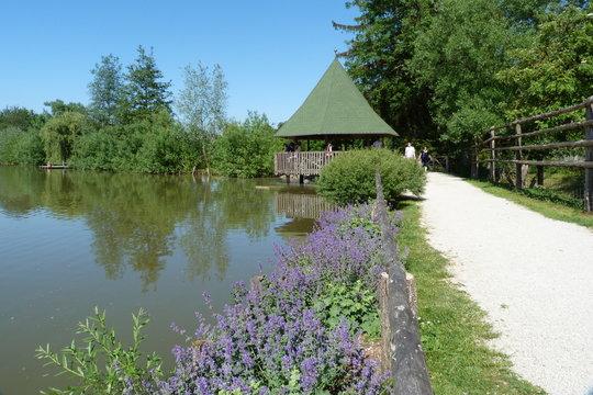 See bzw. Teich im Wildpark Schloss Tambach